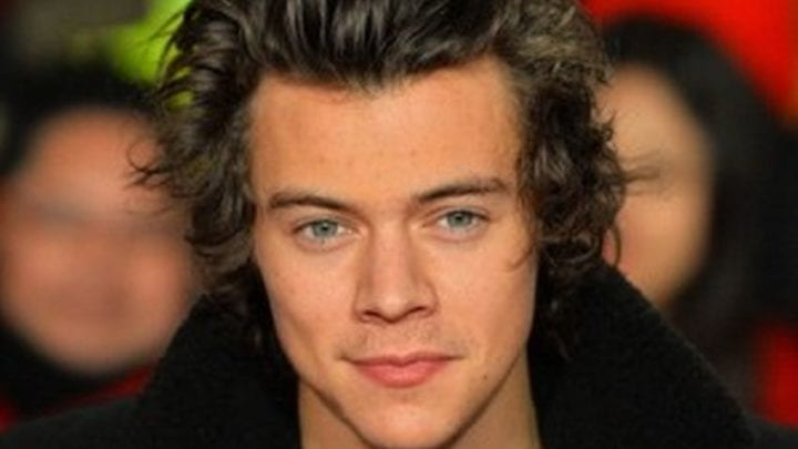 Harry Styles Net Worth 2019