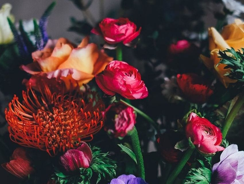 5 Most Expensive Flowers in the World