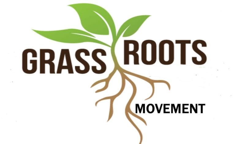 Photo of What is a Grassroots Movement?