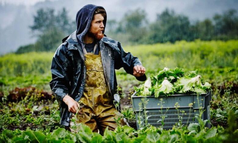 Photo of FDA To Ban Organic Farming?