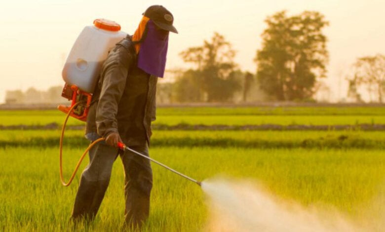 Photo of How Glyphosate Poisoning Explains the Peculiarities of the Autism Gut