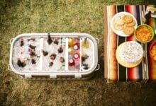 Photo of 5 Best Portable Ice Maker for Camping 2020