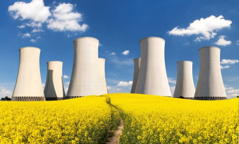 Photo of Nuclear Energy – Friend or Foe?